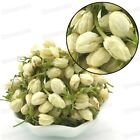 Jasmine Buds Organic Herbal Flower Tea Health Tea Dried Floral Flower #3029