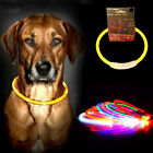 New Rechargeable USB Waterproof LED Flashing Light Pet Dog Collar Safety