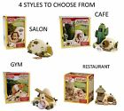 LIVING WORLD HILLSIDE SALON CAFE GYM SYRIAN DWARF HAMSTER CAGE HIDE RESIN HOUSE