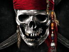 Pirates Of The Caribbean Silver Skull Wall Print POSTER UK