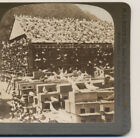 Where thousands of Pigeons nest & brood Los Angeles CA HC White  Stereoview 1906