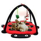 Cat Bed With Toys Kitten Playing Pad Blanket Furniture Tent Hanging Ball House