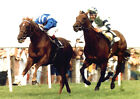 NASHWAN RIDDEN BY WILLIE CARSON 5 TIMES CHAMPION JOCKEY 04 MUGS AND PHOTO PRINTS