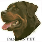 Dog Sticker - Rottweiler - Window Sticker