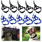 Dog Pet Head Collar Halter Leash Leader No Pull Training Straps S M L XL 2XL