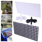 2pcs Grid Isolate Board Divider Fish Tank Bottom Filter Tray Aquarium Crate