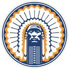 Illinois Fighting Illini Ncaa Vinyl Sticker Decal *sizes* Wall Cornholetruck Car