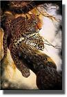 wildlife picture - Leopard on a Tree, Wildlife By Al Agnew Picture on Stretched Canvas, Wall Art De