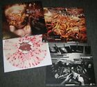 Nothingface -s/t  Rare First Album - Colored Vinyl - Pantera Killswitch HellYeah