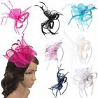 Feather Looped Small Headband Fascinator Ladies Day Races Prom