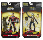 ant man ant man - Marvel Legends Avengers Ant-Man and Wasp Cull Obsidian *IN STOCK*