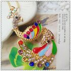 Fashion Crystal Peacock Pendant charm Sweater chain necklac EE1014