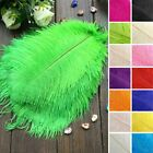 "13""-15"" Genuine Ostrich Feathers Centerpieces Wedding Party WHOLESALE SALE"