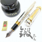 Platinum 3776 Sterling Silver Wrought Goldford with Pt 790 nib Fountain Pen