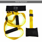 Training Band Strap Suspension Trainer Basic Kit Complete Full Body Workouts