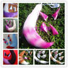 Anime Halloween Spice and Wolf Horo Cosplay Prop Costume Plush Ear 55CM Tail ##