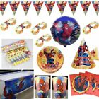 SPIDER-MAN BIRTHDAY PARTY DECORATIONS TABLE COVER BALLOONS HATS PLATES CUPS