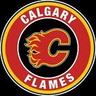 Calgary Flames Circle Logo Vinyl Decal / Sticker 5 Sizes!!! $5.99 USD on eBay