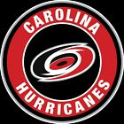 Carolina Hurricanes Circle Logo Vinyl Decal / Sticker 5 Sizes!!! $3.99 USD on eBay