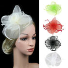 Lady Veil Feather Flower Wedding Party Fascinator Hat Hair Clip Accessories Sanw