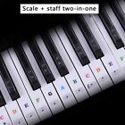 US 37/49/54/61/88 Piano Keyboard Stickers Transparent Removable Piano Sticker