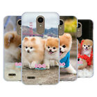 OFFICIAL BOO-THE WORLD'S CUTEST DOG PLAYFUL HARD BACK CASE FOR LG PHONES 1