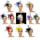Bowknot Feather Headband Aliceband Fascinator Ladies Bridal Party Ascot Race