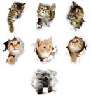 3d Cat Wall Stickers Self Adhesive Waterproof Wall Decal Bathroom Home Decor