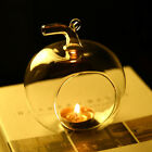 US Clear Globe Glass Romantic Dinner Candle Holder Hanging Terrarium Plant Decor
