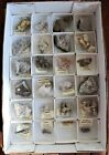 Collection of 24 mineral specimens from East Granby, Connecticut. Flat #40