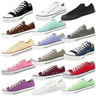 Converse Chuck Taylor All Star Ox Schuhe Sneaker Chucks Low Klassiker Basic