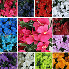 288 pcs Silk Mini PRIMROSES Flowers Wedding Bouquet Party Centerpieces Wholesale
