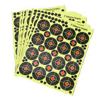 160pcs/10 sheets Shooting Target Glow Florescent Paper Target for Hunting ArroTS