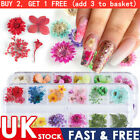 18+Styles+Mixed+3D+Real+Dry+Dried+Flower+Nail+Sticker+Nail+Art+Tips+Decoration