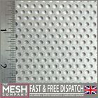 3mm Galvanised Steel (3mm Hole x 5mm Pitch x 1mm Thick) Perforated Mesh Sheet