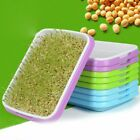 Hydroponics Seed Germination Tray Seedling Tray Sprout Plate Grow Nursery Pots