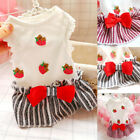 Внешний вид - Pet Clothes Gift Bow Cat Clothes Dog Dress Fashion Colorful Sleeveless Skirt New