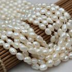 4-12mm Natural White Freshwater Pearl Baroque Pearl Heteromorphic Loose Beads 14