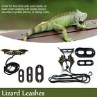 Leather Reptile Pet Leash Lizard Crocodile Squirrel Cat Collar Dinosaur