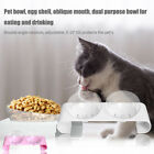 Double Bowl With Raised Stand Non Slip Pet Feeder Transparent Food Container