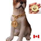 1PC Copper with gold plated bully pitbull Dog Tags dog ID best gift for dogs TOP