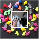 Size Large 20 Soft Nail Caps Cat Dog Claws + Adhesive + Glue Tip USA SELLER