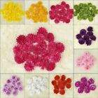 24Pc* Chinese Flower Heads Artificial Silk Flower Party Wedding Home Decors FH10