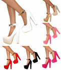 WOMENS SUEDE HIDDEN PLATFORM BLOCK HIGH HEEL PARTY SHOE ANKLE STRAP ZIP SIZE