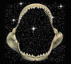 Great White Shark Jaws Teeth T-Shirt PLUS SIZE -or- SUPERSIZE T652F Rhinestone