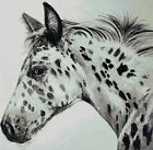 APPALOOSA # 3 - CROSS STITCH CHART