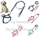 Adjustable Small Dog Cat Rabbit Harness with Leash Bone & Paw Print Free Ship