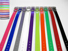 Dogtra Compatible 1 in Replacement Dog Collar Strap-D Ring-Top Quality-USA Made