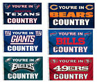 NFL Teams - You're in Country Design 3' x 5' Flag / Banner on eBay