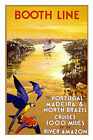 BOOTH LINE CRUISES Portugal,  Madeira,   Vintage Travel Poster  A1A2A3A4 Sizes
